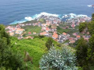 100 1883 300x226 Madeira