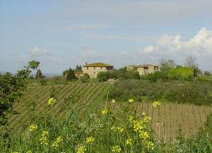 I Toskana Landschaft 300x217 Nord Toskana